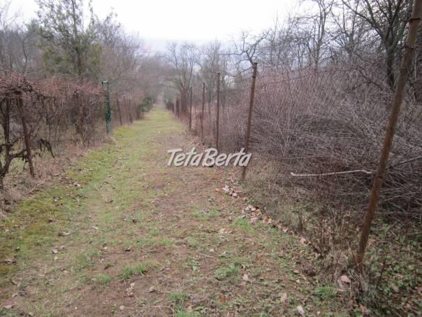 Predaj - záhrada, Košice - Vyšné Opátske, foto 1 Reality, Pozemky   Tetaberta.sk - bazár, inzercia zadarmo