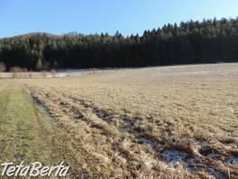 RE01021198 Pozemok / Orná pôda (Predaj) , Reality, Pozemky  | Tetaberta.sk - bazár, inzercia zadarmo