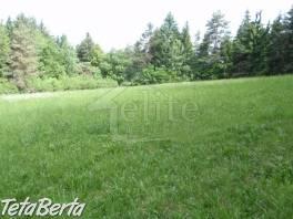 RK01021164 Pozemok / Lesná pôda (Predaj) , Reality, Pozemky  | Tetaberta.sk - bazár, inzercia zadarmo