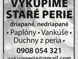 Výkup starého peria , Dom a záhrada, Ostatné  | Tetaberta.sk - bazár, inzercia zadarmo