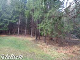 Predaj lesného pozemku - zvýhodnená cena! , Reality, Pozemky  | Tetaberta.sk - bazár, inzercia zadarmo