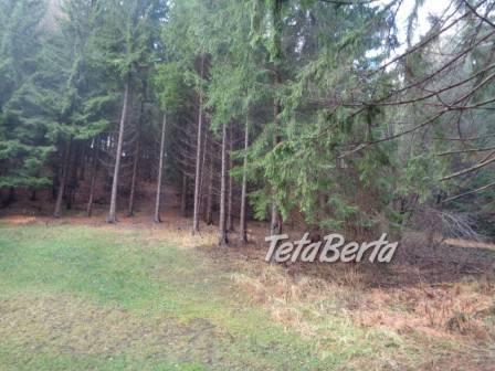 Predaj lesného pozemku, foto 1 Reality, Pozemky | Tetaberta.sk - bazár, inzercia zadarmo