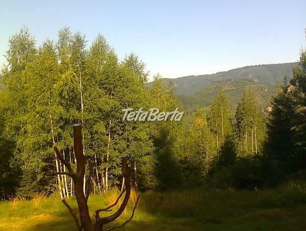 Rekreačná chata na čistinke v Osrblí-Štomp - nádherné prostredie, foto 1 Reality, Chaty, chalupy | Tetaberta.sk - bazár, inzercia zadarmo