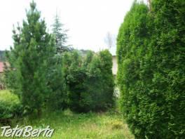 SUPER RD so záhradou v Brezne - Zadné Halny , Reality, Domy  | Tetaberta.sk - bazár, inzercia zadarmo