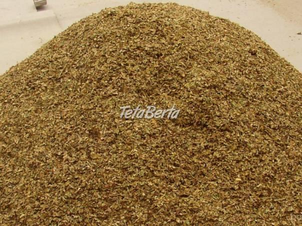 Tabak semená, priesady, zelené listy,  samozber, foto 1 Dom a záhrada, Zo záhradky | Tetaberta.sk - bazár, inzercia zadarmo