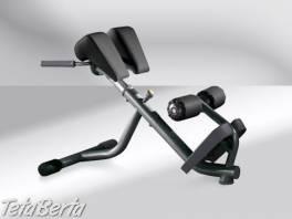 Posilovací stroj Technogym - Lower Back Bench Pure Strength – Repasovaný , Hobby, voľný čas, Šport a cestovanie    Tetaberta.sk - bazár, inzercia zadarmo