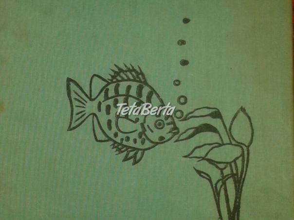 Akváriové ryby , foto 1 Hobby, voľný čas, Film, hudba a knihy | Tetaberta.sk - bazár, inzercia zadarmo