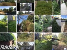 Čistenie a údržba pozemkov, kosenie , Dom a záhrada, Ostatné  | Tetaberta.sk - bazár, inzercia zadarmo