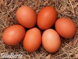 Podporte Zdravé domáce vajíčka , Móda, krása a zdravie, Starostlivosť o zdravie  | Tetaberta.sk - bazár, inzercia zadarmo