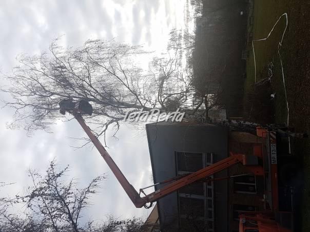 Kosenie trávy, výrub a orezy stromov, čistenie pozemkov, foto 1 Obchod a služby, Stroje a zariadenia   Tetaberta.sk - bazár, inzercia zadarmo