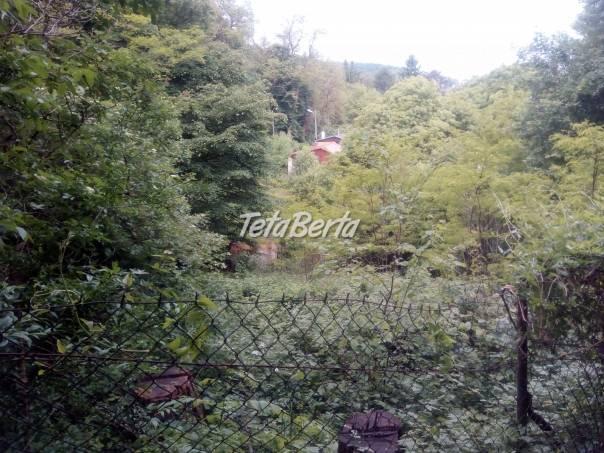 Kosenie trávy, výrub a orezy stromov, čistenie pozemkov, foto 1 Obchod a služby, Stroje a zariadenia | Tetaberta.sk - bazár, inzercia zadarmo