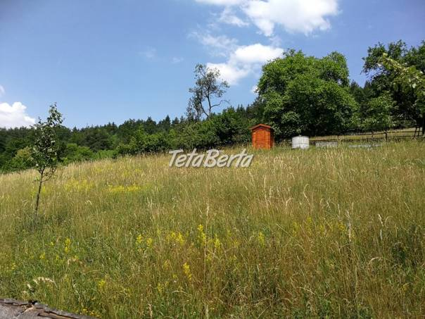 RE01021121 Pozemok / Trvalé trávnaté porasty (Predaj), foto 1 Reality, Pozemky | Tetaberta.sk - bazár, inzercia zadarmo