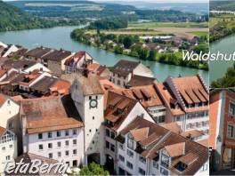 Waldshut-Tiengen – Opatrovanie v peknom dome , Práca, Zdravotníctvo a farmácia  | Tetaberta.sk - bazár, inzercia zadarmo