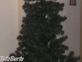 Vianočný stromček - borovica - 2,20 m , Dom a záhrada, Ostatné    Tetaberta.sk - bazár, inzercia zadarmo