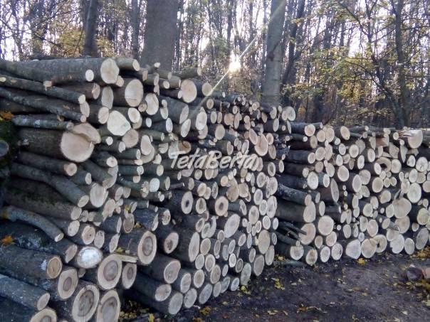 Predám palivové drevo., foto 1 Dom a záhrada, Ostatné | Tetaberta.sk - bazár, inzercia zadarmo