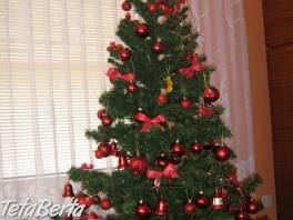Vianočný stromček , Dom a záhrada, Ostatné  | Tetaberta.sk - bazár, inzercia zadarmo