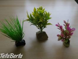 Predám umelé rastliny do akvária , Zvieratá, Príslušenstvo a krmivo  | Tetaberta.sk - bazár, inzercia zadarmo