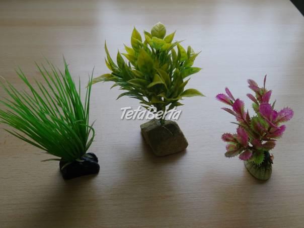 Predám umelé rastliny do akvária, foto 1 Zvieratá, Príslušenstvo a krmivo | Tetaberta.sk - bazár, inzercia zadarmo