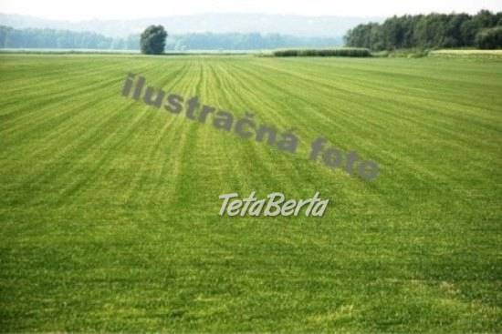 RE0602144 Pozemok / Trvalé trávnaté porasty (Predaj), foto 1 Reality, Pozemky | Tetaberta.sk - bazár, inzercia zadarmo