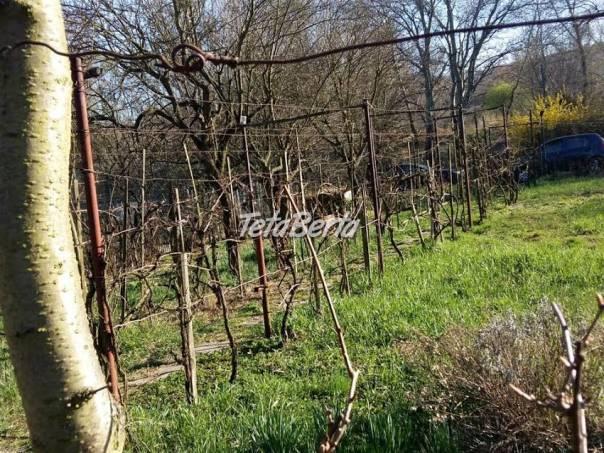 Predaj Záhrada Dúbravka - Pri Technickom skle, foto 1 Reality, Pozemky | Tetaberta.sk - bazár, inzercia zadarmo