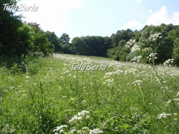 RE0102442 Predaj, slnečný pozemok o výmere 7988 m2 - Považská Bystrica, foto 1 Reality, Pozemky | Tetaberta.sk - bazár, inzercia zadarmo