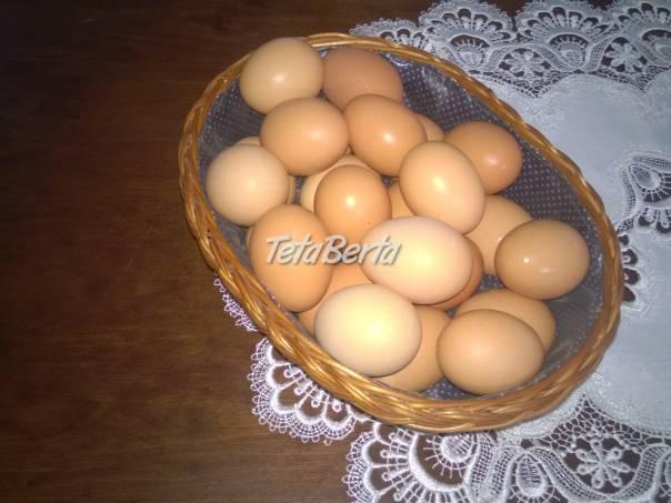 Domáce vajcia, foto 1 Zvieratá, Ostatné | Tetaberta.sk - bazár, inzercia zadarmo