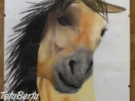Predám obraz koňa, v skle.  , Hobby, voľný čas, Ostatné  | Tetaberta.sk - bazár, inzercia zadarmo
