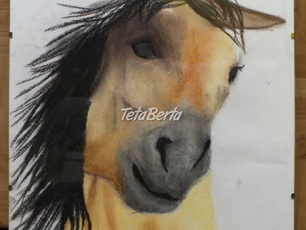 Predám obraz koňa, v skle. , foto 1 Hobby, voľný čas, Ostatné | Tetaberta.sk - bazár, inzercia zadarmo