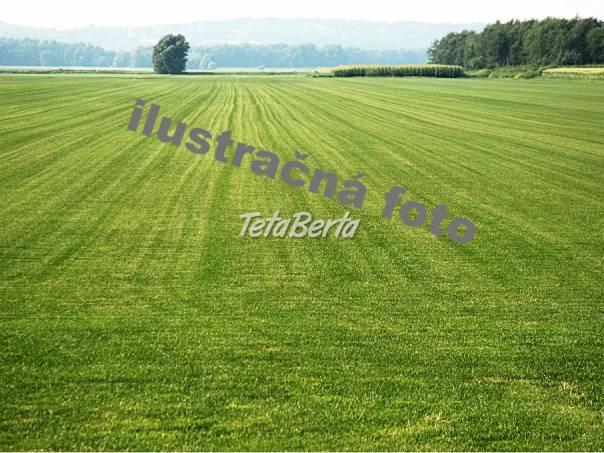 RE06025 Pozemok / Orná pôda (Predaj), foto 1 Reality, Pozemky | Tetaberta.sk - bazár, inzercia zadarmo