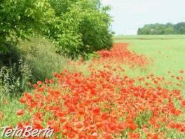RK0602157 Pozemok / Orná pôda (Predaj) , Reality, Pozemky  | Tetaberta.sk - bazár, inzercia zadarmo